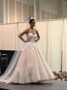The Greater Virginia Bridal Show- Roanoke 9/21/14