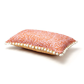 home_reversible-decorative-pillow---giraffing-me-crazy-and-bullseye[1]