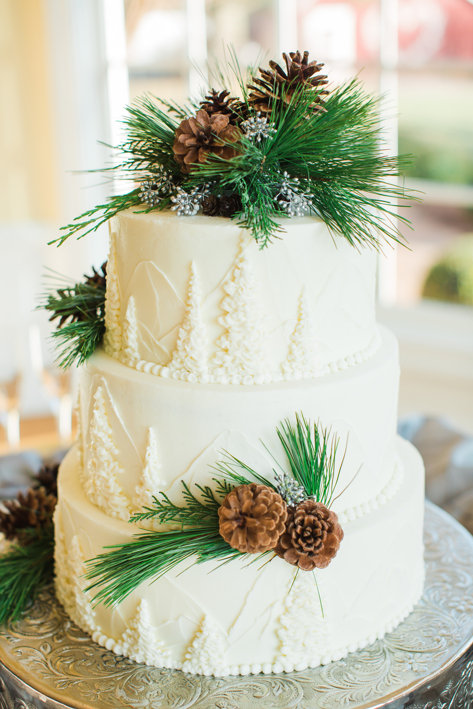 First This Lovely Winter Themed Cake Finished With Pine Cones And Snow Sparkles
